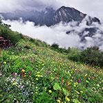 云中花园之九顶后山